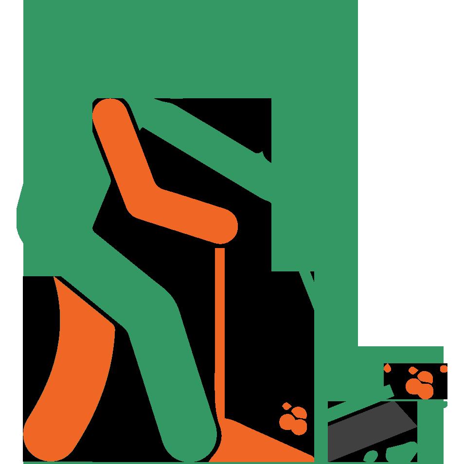 Public Cleansing
